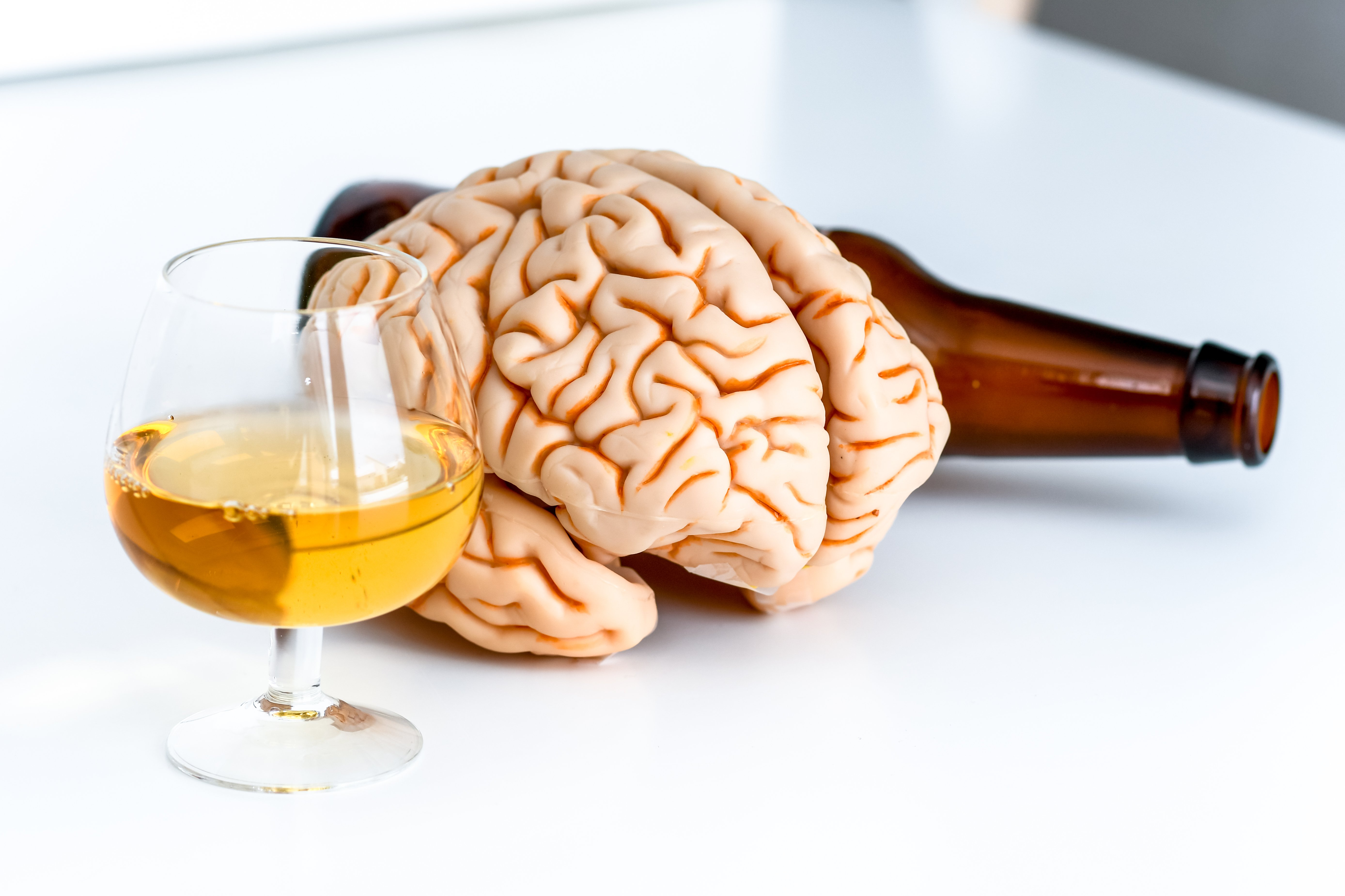 A brain and alcohol that depict How alcohol affects the brain